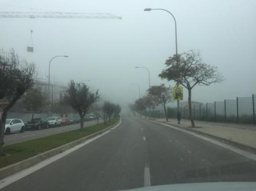 Dichter Nebel behinderte am Freitagmorgen den Straßenverkehr in Palma.