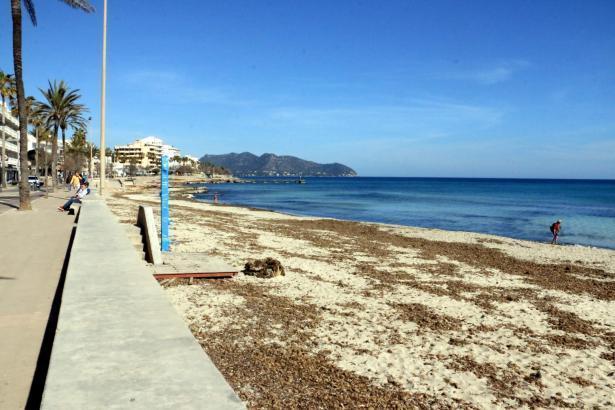 Der Strand von Cala Millor gibt derzeit kein gutes Bild ab.