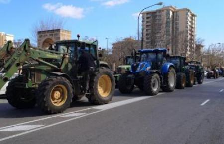 Diese Traktorkolonne fuhr am Samstag durch Palma de Mallorca.
