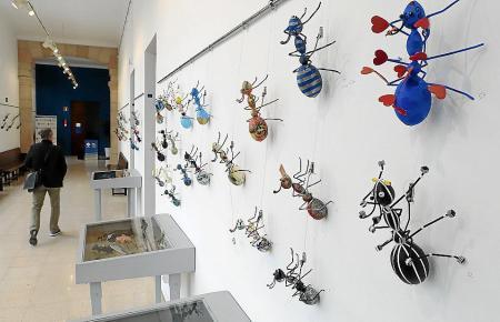 Die Ameisen können noch bis zum 25. April angeschaut werden.