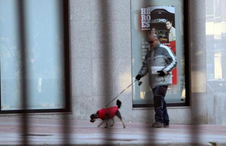 Hundehalter führt seinen Vierbeiner aus.