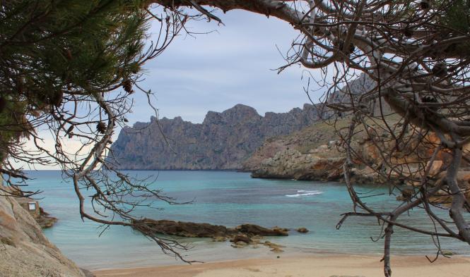 Grau und wenig erbaulich zeigt sich das Wetter in der ersten Wochenhälfte auf der größten Balearen-Insel.