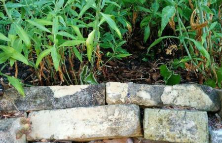 Kleine (Trocken)Mauern verleihen dem Garten zusätzlichen Charme und Charakter.