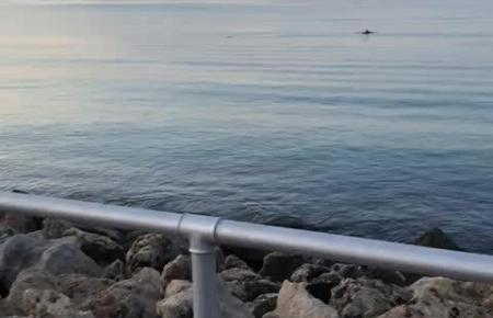 So einen Anblick gibt es vor Palma selten.