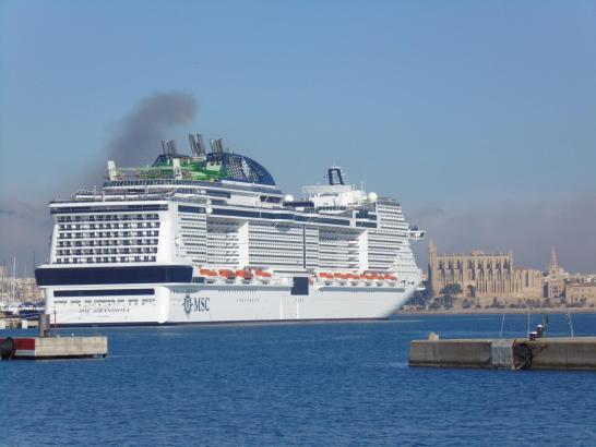 In der jüngeren Vergangenheit wurde immer stärker kritisiert, dass zu viele Kreuzfahrtschiffe den Hafen von Palma anlaufen.