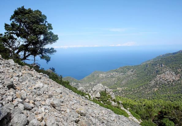 Blick auf ein Geröllfeld im Tramuntana-Gebirge auf Mallorca.