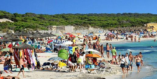 Noch ist nicht gesichert, wie die Belegung an Mallorcas Traumstrand Es Trenc in diesem Sommer aussehen wird.