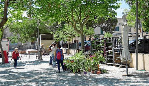 Wo normalerweise kaum ein Durchkommen ist, herrschte am Mittwoch auf dem Wochenmarkt in Sineu noch weitgehend Leere. Die ersten Stände hatten nach drei Wochen wieder geöffnet.