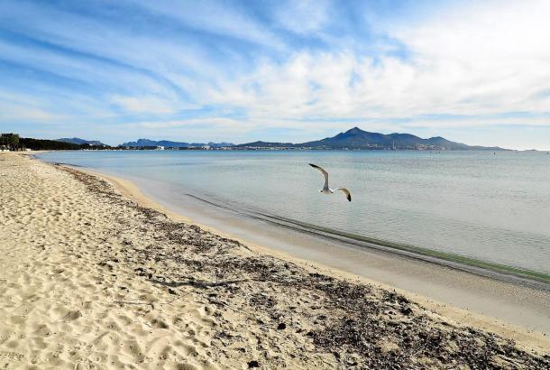 Ab Montag dürfen die Menschen auf Mallorca wieder die Strände der Insel genießen. So leer wie auf diesem Bild wird die Playa de Muro dann sicherlich nicht sein.