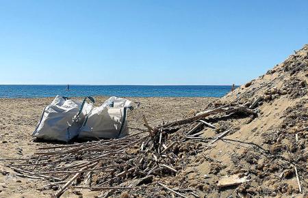 So sieht es zur Zeit am Strand von Canyamel aus.