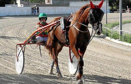 Die Pferderennbahn in Manacor. Momentan haben nur professionelle Reiter Zugang.