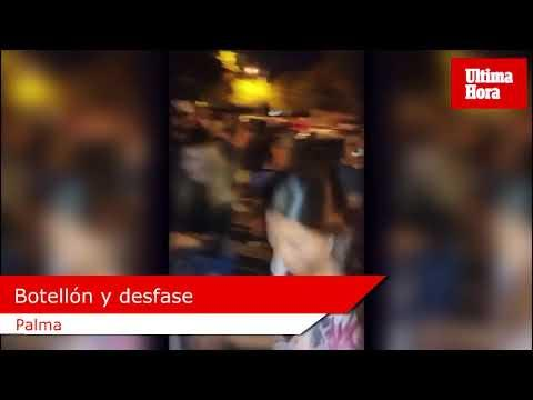 Hunderte Jugendliche bei Trinkgelagen und illegalen Festen auf Mallorca