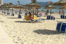 Endlich Liegen und Sonnenschirme am Strand von Cala Millor