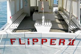 Hommage an den berühmten Delfin Flipper.