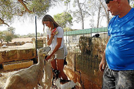 Jens Heidenreich (r.) lässt seine Gäste auch Ziegen streicheln und füttern.