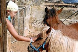Der Nachwuchs kann Pferde streicheln.