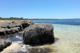 Strandtipp auf Mallorca: Auf dem Weg zur Bucht mit der Kohle im Namen