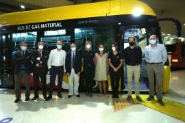 Erste neue Überlandbusse auf Mallorca übergeben