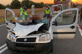 Pferd stirbt bei schwerem Verkehrsunfall auf Mallorca