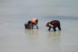 Mitarbeiter des Gemeinde suchen den Meeresboden nach Resten der gestrandeten Yacht ab, um diese zu beseitigen.