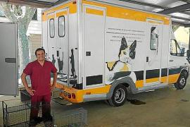 Tierschutzprojekt steht auf Mallorca auf der Kippe