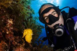 Bankangestellter macht spektakuläre Unterwasseraufnahmen