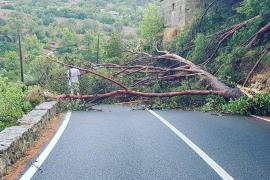 Nach Unwetter: Banyalbufar könnte Katastrophenzone werden
