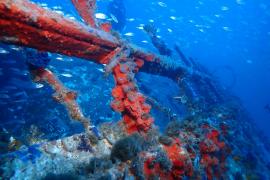 pollença - El barco, `Andrea Ferrara¿, descubierto en 2019 en la bahía de Pollença