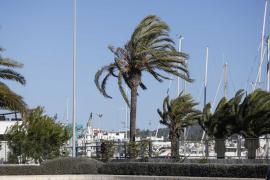 Heftiger Herbststurm wird auf Mallorca Temperaturen abstürzen lassen