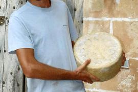 Käse, so weit das Auge reicht. Die Auswahl des Käsefeinkoststandes Saglà ist international und exquisit.