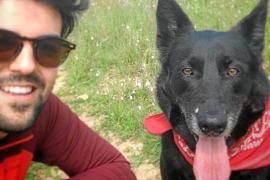 3000 Euro Geldbuße wegen Tierarztbesuch während Ausgangssperre