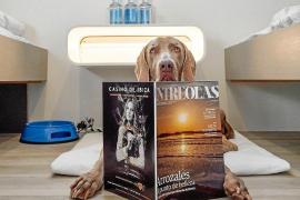Mallorca-Fähren werden tierfreundlicher