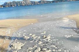 Anwohner in Pollença machen Front gegen Abwasser am Strand