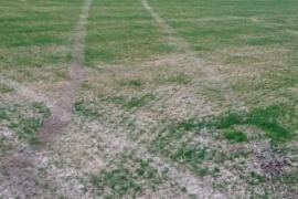 Jugendliche verunstalten mit Auto Rasen des größten Mallorca-Stadions