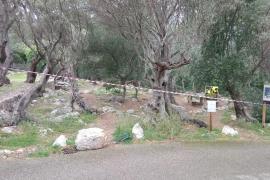 Mallorca-Regierung schließt sämtliche 47 Picknickplätze