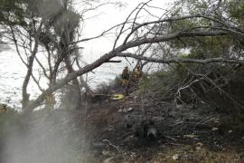 Strauchbrand an der Instagram-Bucht Caló des Moro ausgebrochen