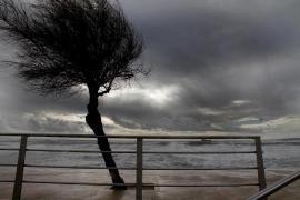 Es wird wieder stürmisch auf Mallorca