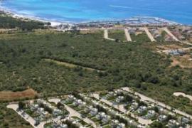 Umweltschutzgruppe Terraferida fordert Flächenschutz nahe Es Trenc