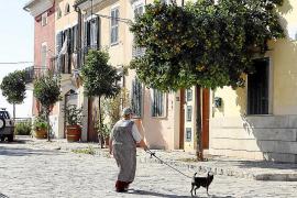 So soll Palma de Mallorcas Mühlenviertel Es Jonquet geschützt werden