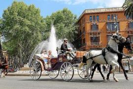 Ärger mit den Pferdekutschen in Palma de Mallorca