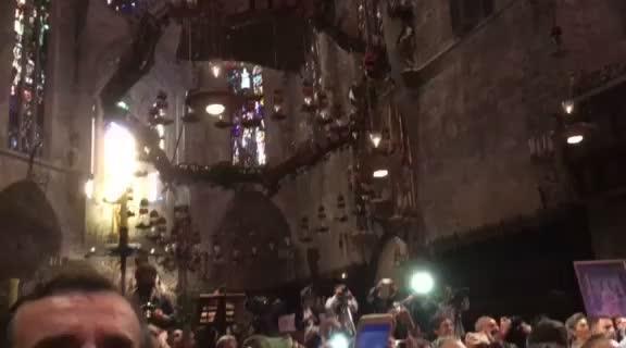 Am 11.11. die Licht-Acht auf Mallorca per Live-Stream erleben