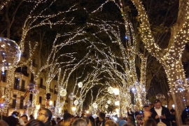 Megahoher Weihnachtsbaum wird in Palma aufgestellt