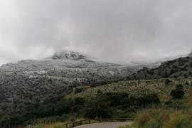 Am Puig Major ist ab 900 Metern die Schneedecke vier bis fünf Zentimeter dick.