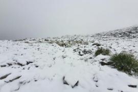 Schnee auf dem zweithöchsten Berg Mallorcas, dem Massanella (1364 Meter).