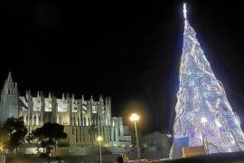 Durchgang zu Palmas beleuchteten Weihnachtsbaum gesperrt