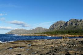 Geplanter Campingplatz sorgt für Unmut auf Mallorca