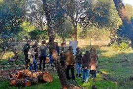 Gemeinde Artà verärgert über Campingplatz-Pläne