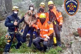 Hund aus 35 Meter tiefem Loch auf Mallorca gerettet