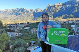 So fördert ein deutscher Unternehmer das Orangen-Business auf Mallorca