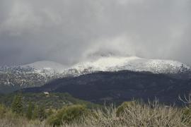 Wasserreserven auf Mallorca liegen bei 60 Prozent